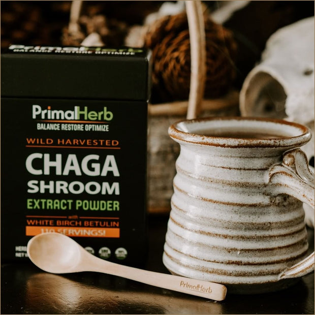 Chaga Shroom - The VitaKea Store - Nootropics & Biohacking for New Zealand