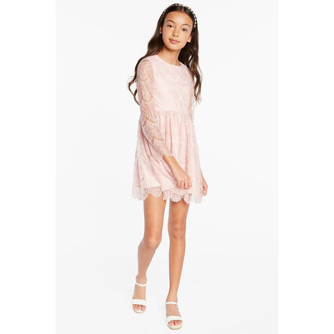 Bardot Junior - Gertrude Lace Dress - Blush