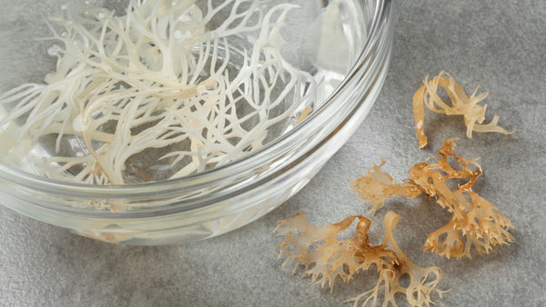 What are some side effects of sea moss?