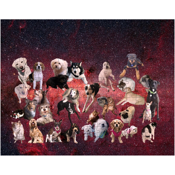 Pet Puzzle: Pets in Space!