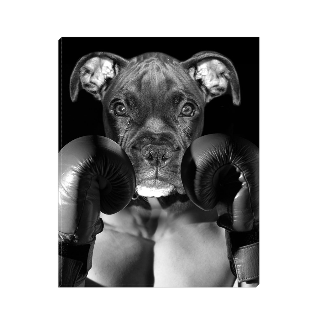 Custom Boxer Portrait for Jodi 1