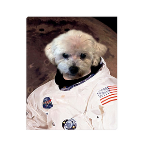 Custom Astronaut Portrait for Emma