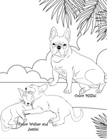 Pets At The Beach: A Pet Coloring Book for Children