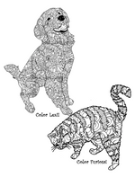 Pets: Adult's Coloring Book
