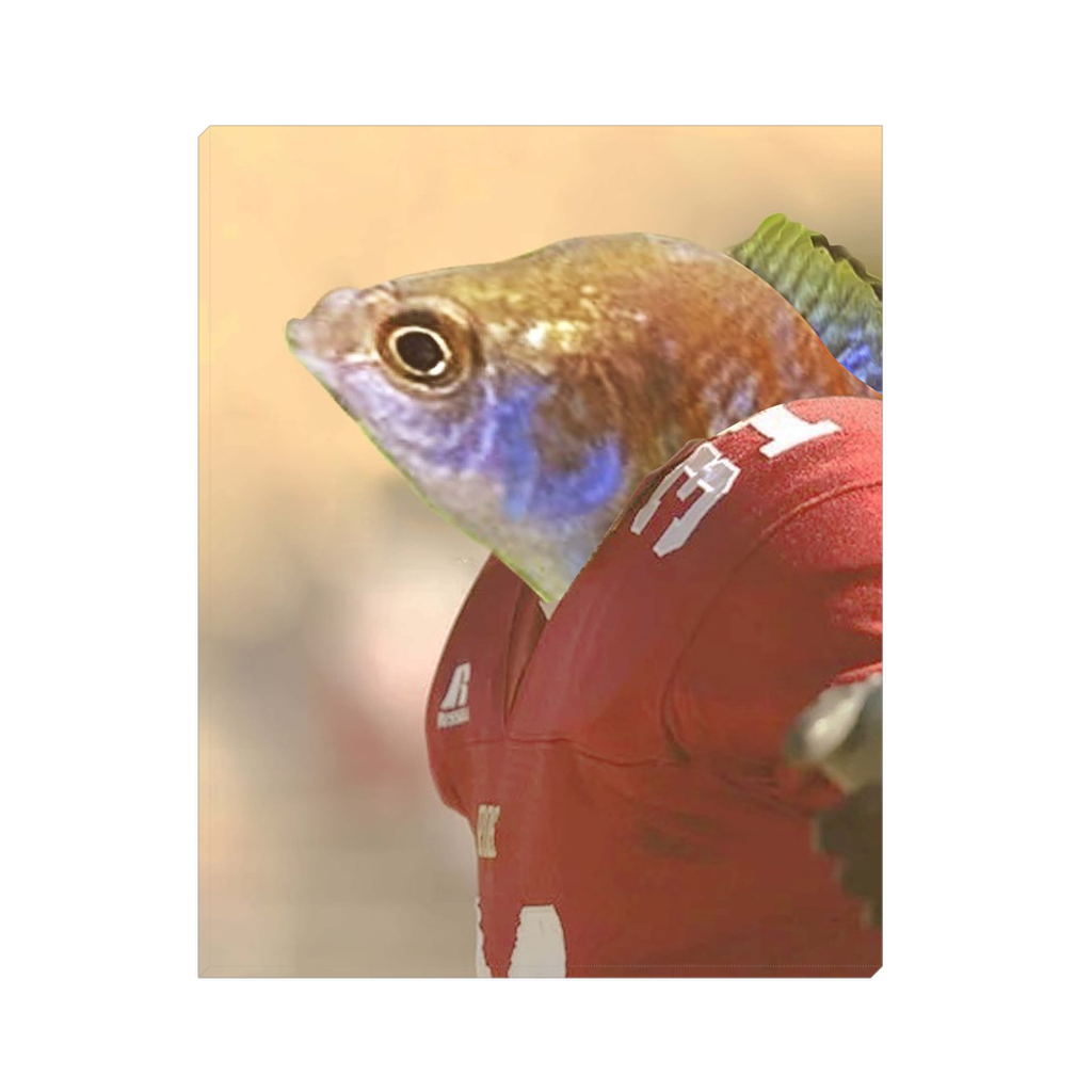 Custom American Football Player Portrait for Doug 2