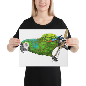 Canvas (in): Parrot
