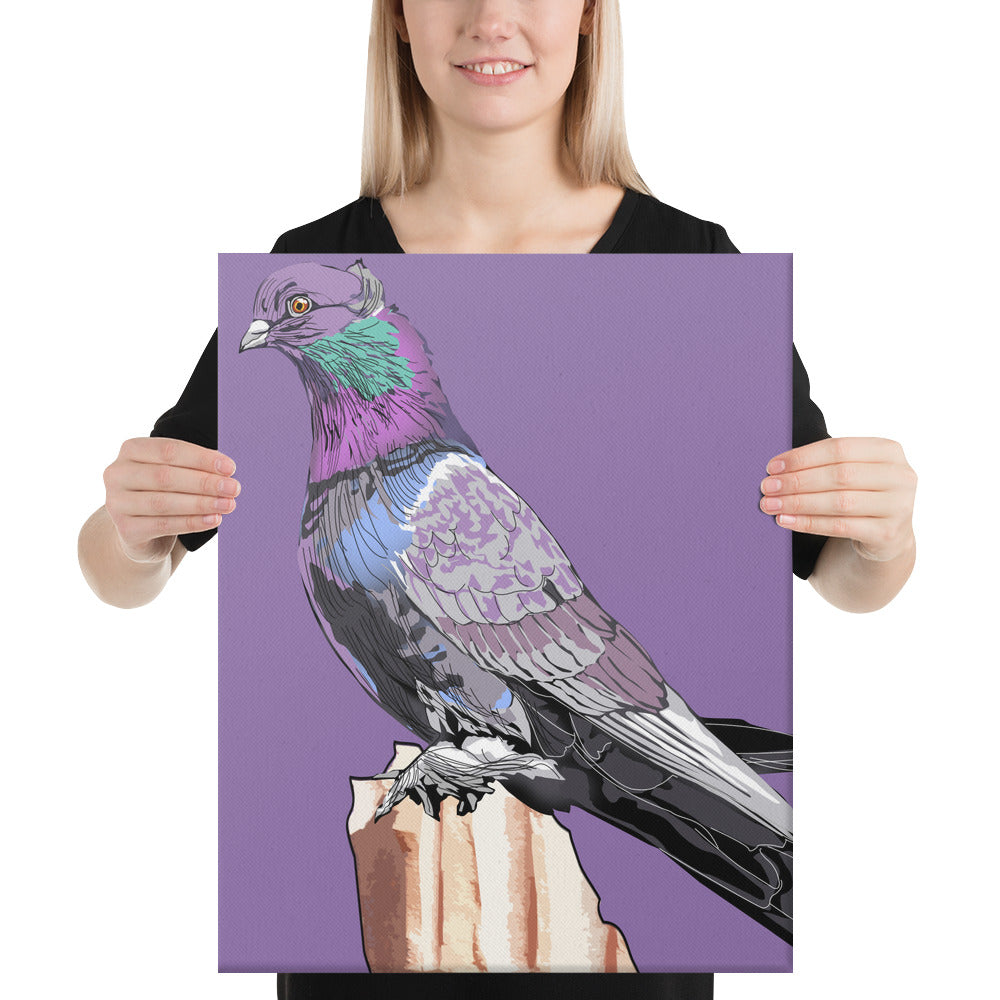 Canvas (in): Pigeon