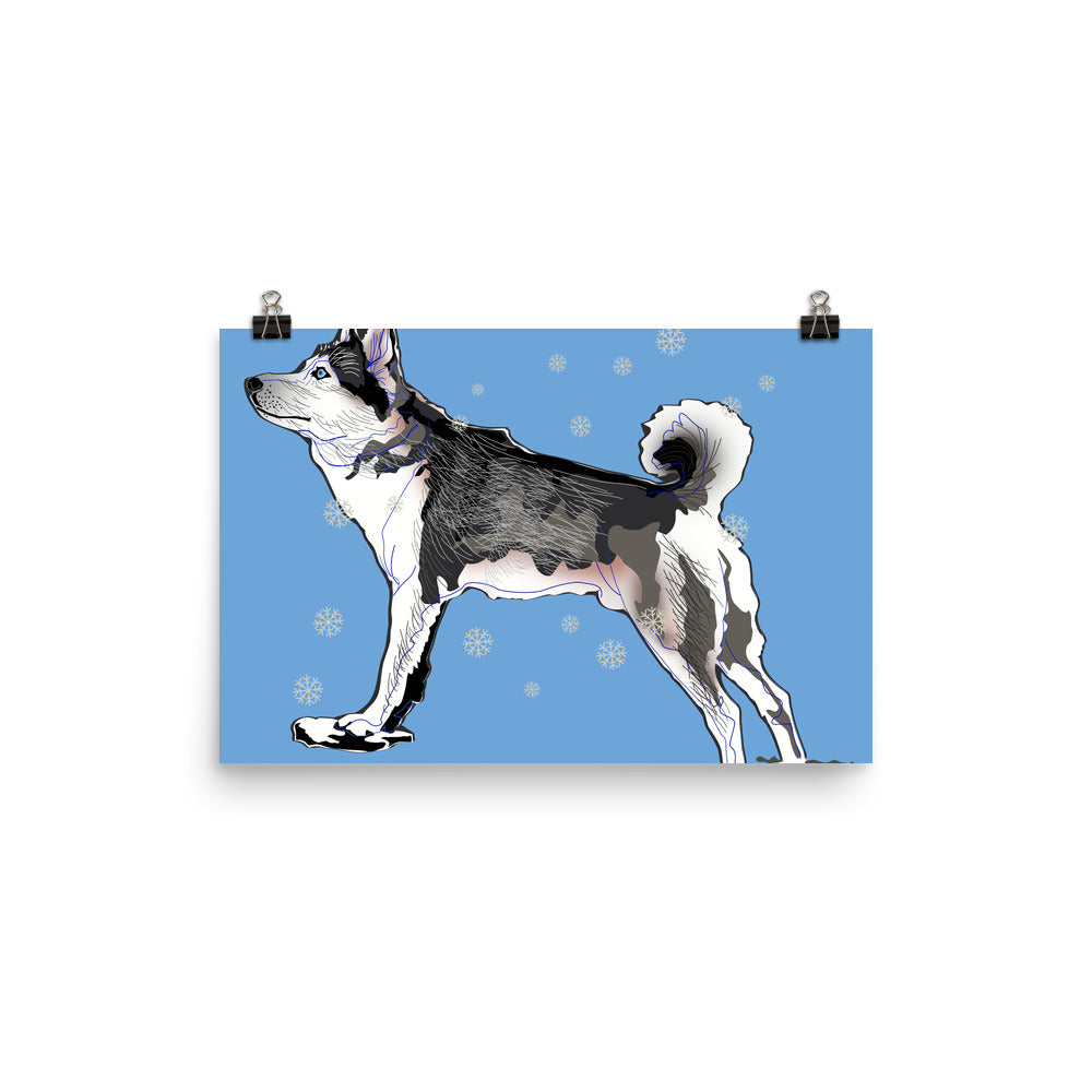 Enhanced Matte Paper Poster (in): Siberian Husky