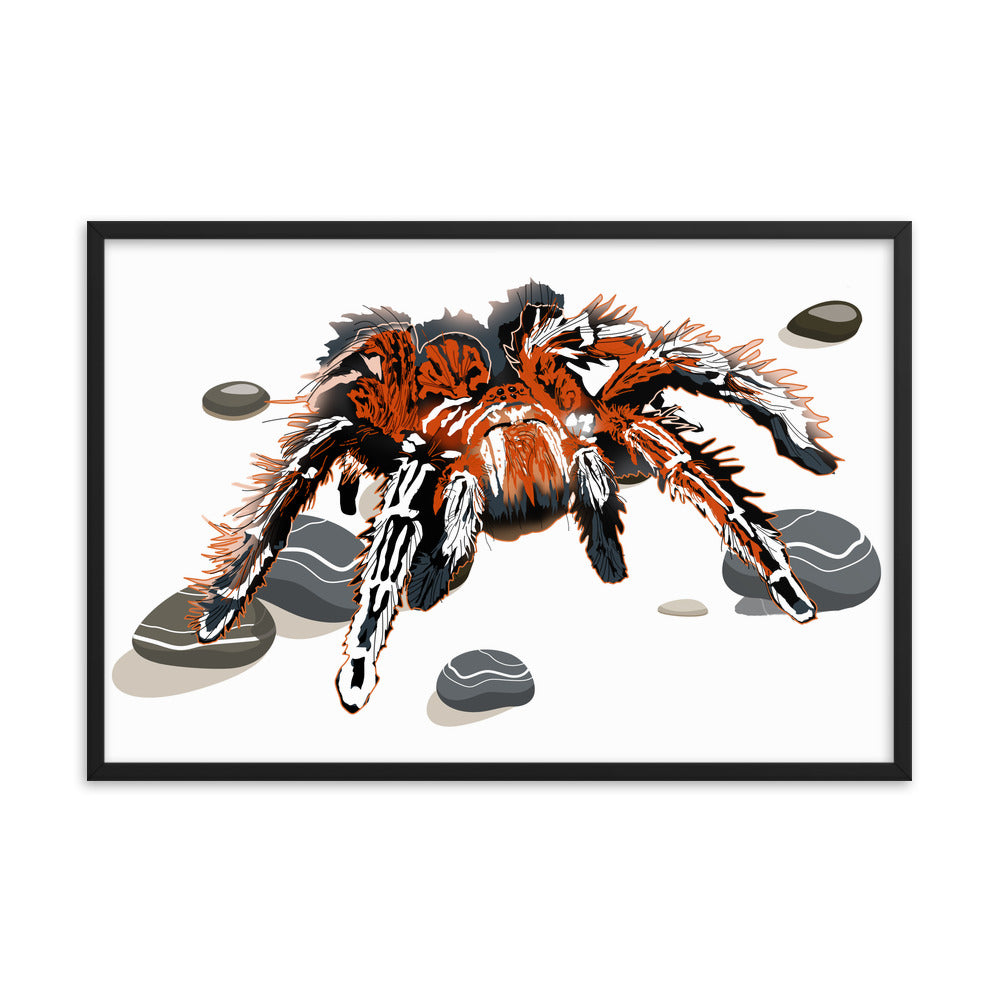 Enhanced Matte Paper Framed Poster (in): Tarantula