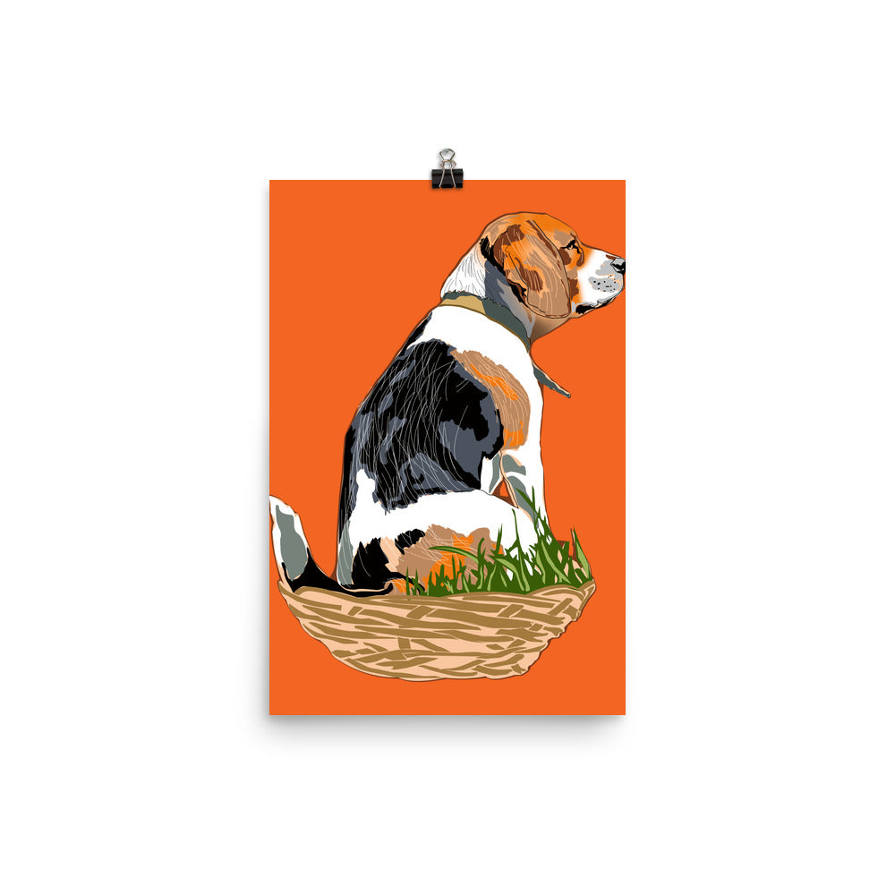 Enhanced Matte Paper Poster (in): Beagle