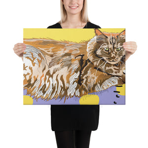 Canvas (in): Maine Coon