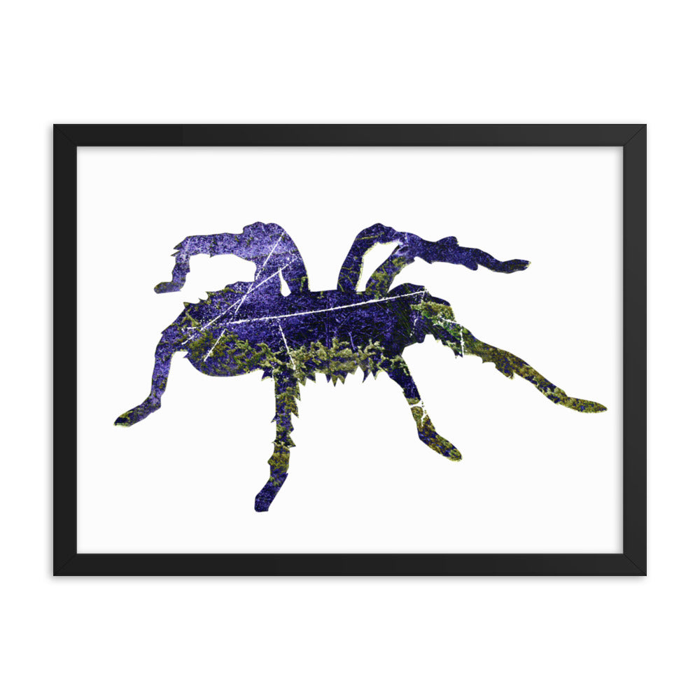 Enhanced Matte Paper Framed Poster (in): Tarantula Silhouette