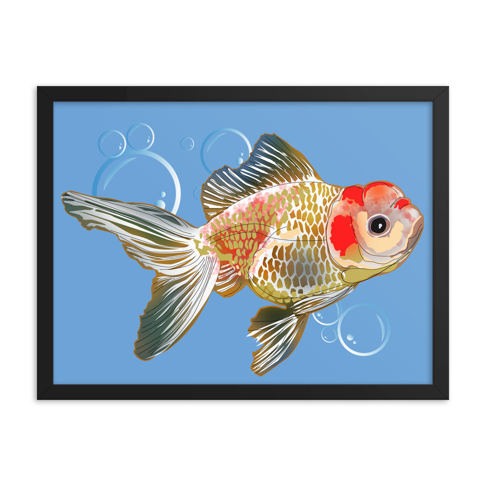 Enhanced Matte Paper Framed Poster (in): Gold Fish