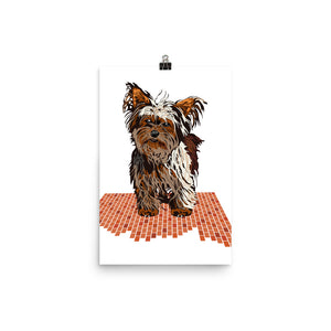 Enhanced Matte Paper Poster (in): Yorkshire Terrier