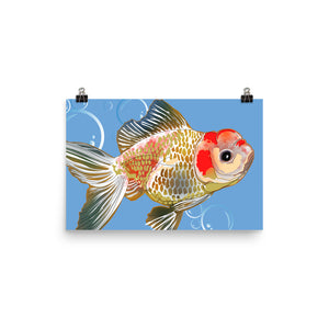 Enhanced Matte Paper Poster (in): Gold Fish