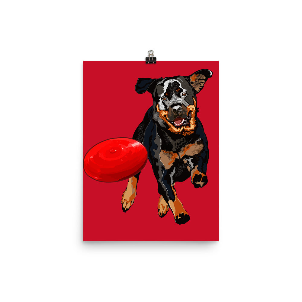 Enhanced Matte Paper Poster (in): Rottweiler