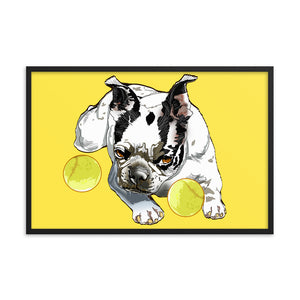 Enhanced Matte Paper Framed Poster (in): Boston Terrier