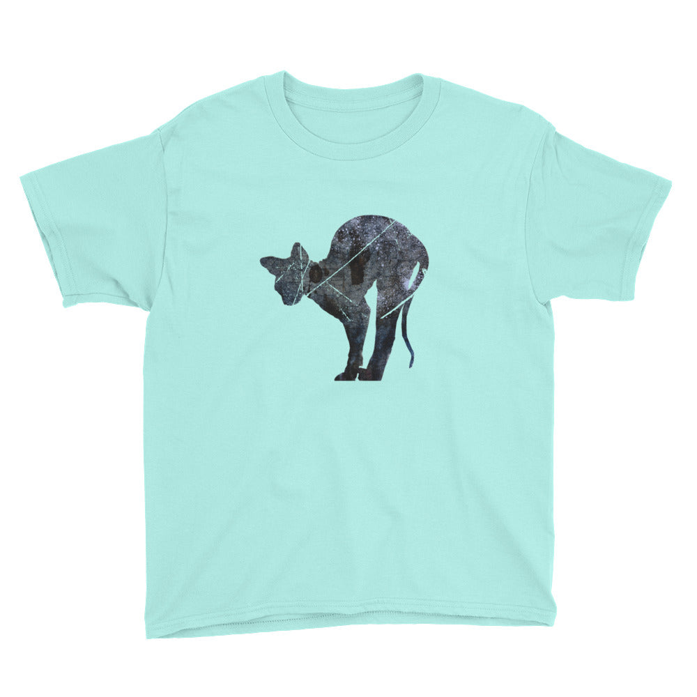 Youth Lightweight T-Shirt: Sphynx Cat Silhouette