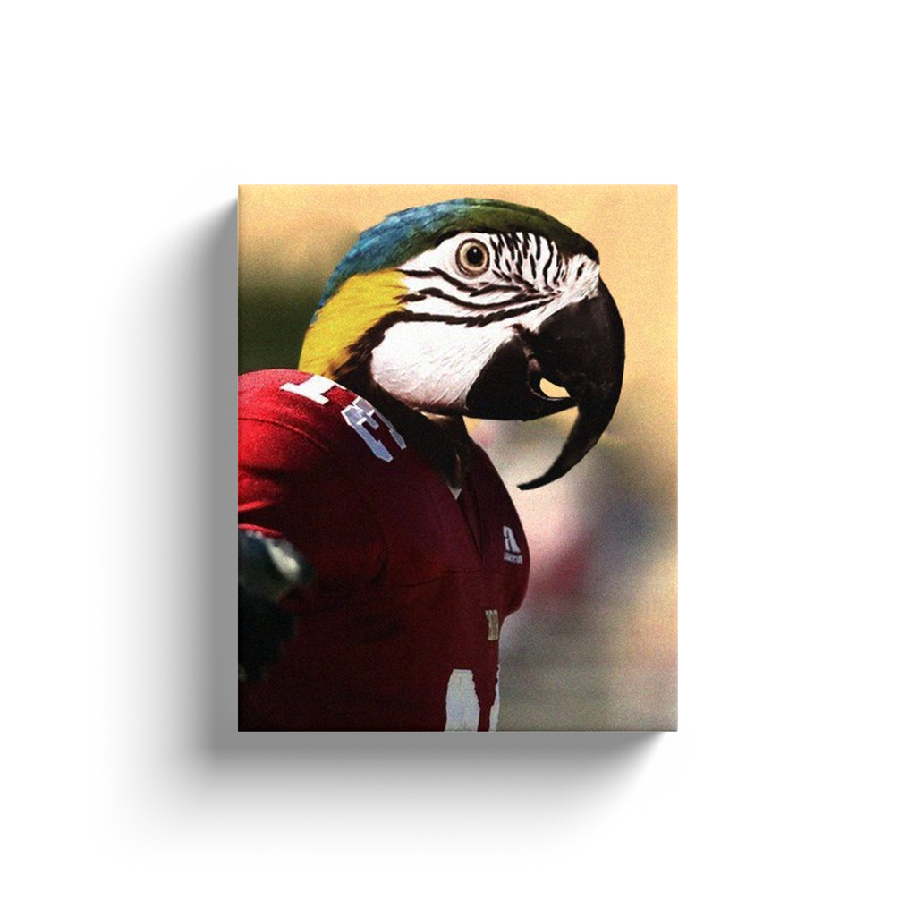 Canvas Wraps: Parrot Football Player 1