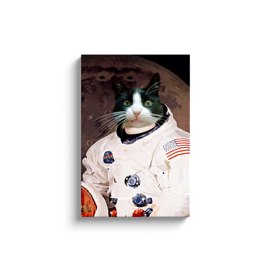 Custom Astronaut Portrait for Riley