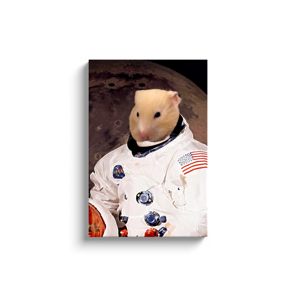 Custom Astronaut Portrait for Arianna