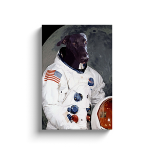 Custom Astronaut Portrait for Matthew