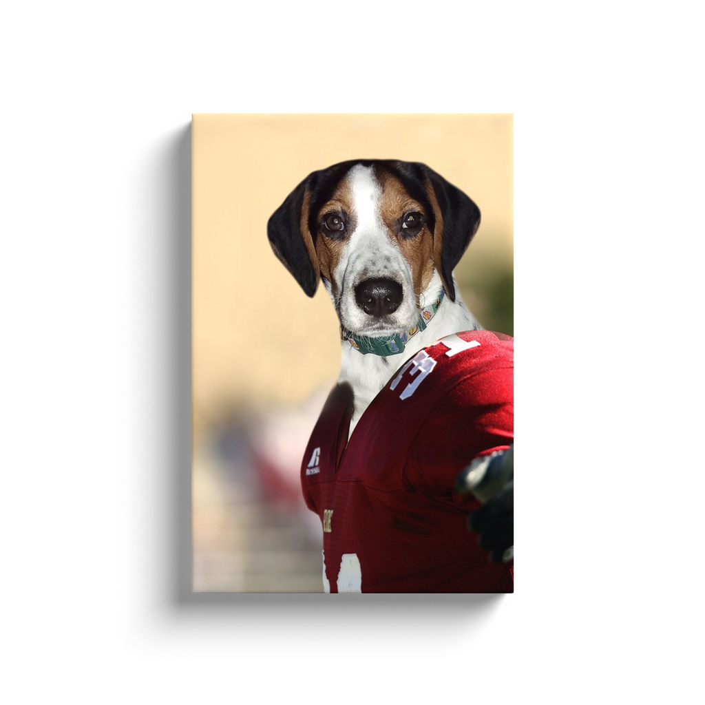 Custom Football Player Portrait for Tracie