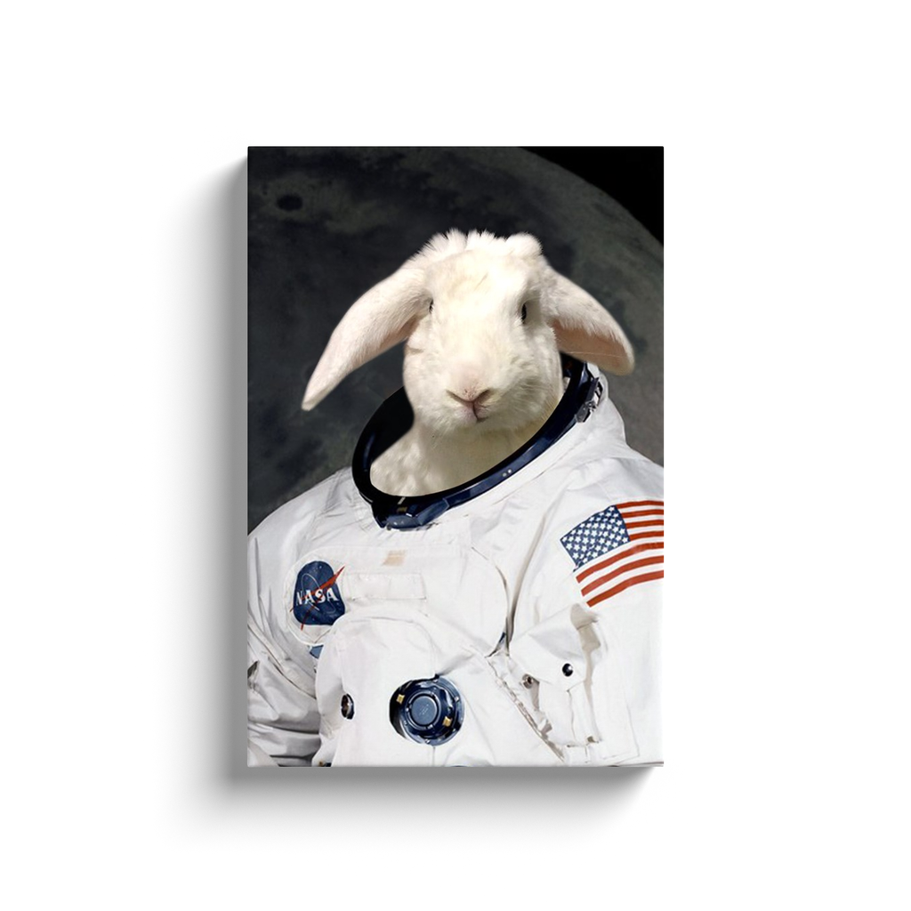 Custom Astronaut Portrait for Melissa 3