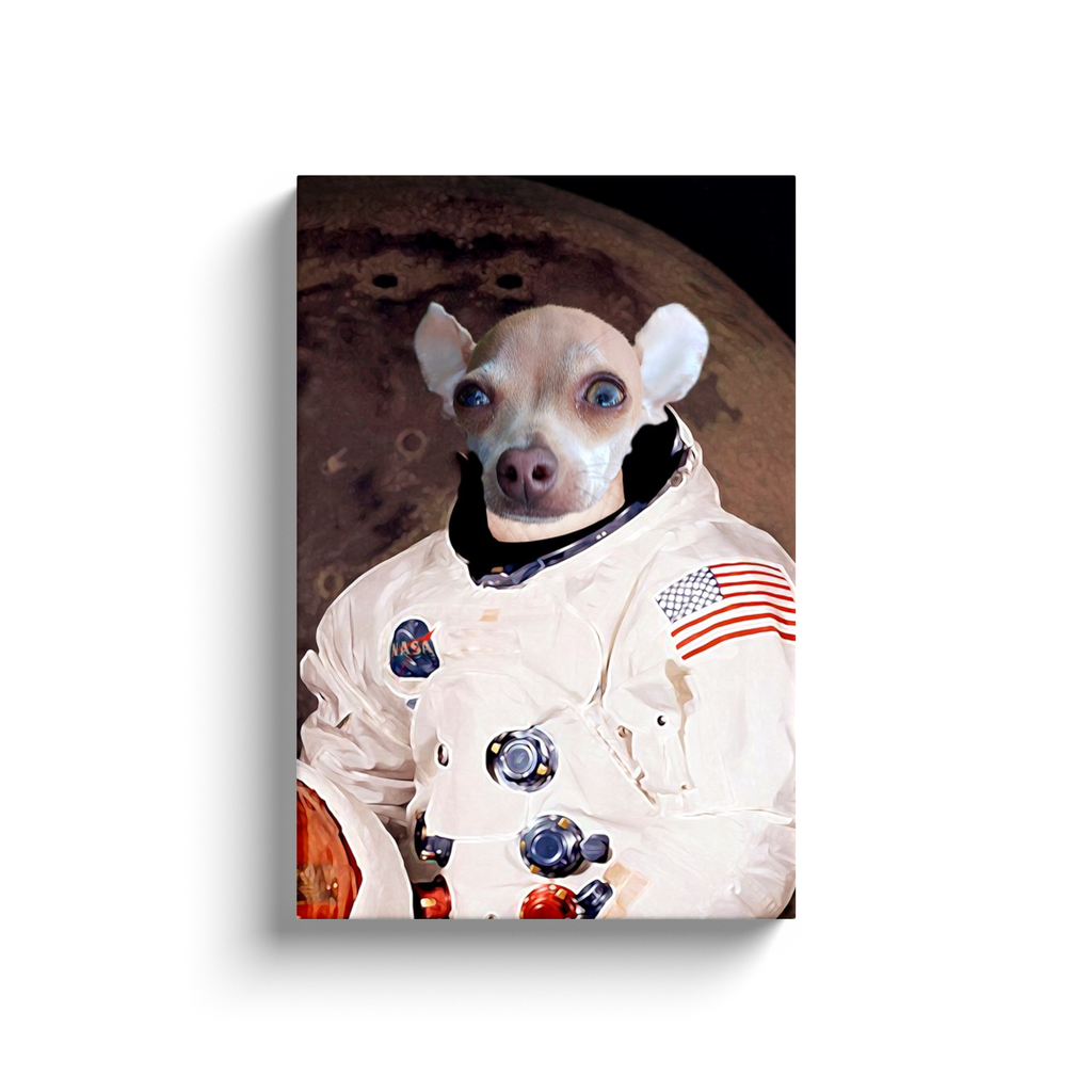 Custom Astronaut Portrait for Vicente