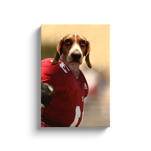 Custom Football Player Portrait for Brian