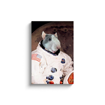 Custom Astronaut Portrait for Jaku