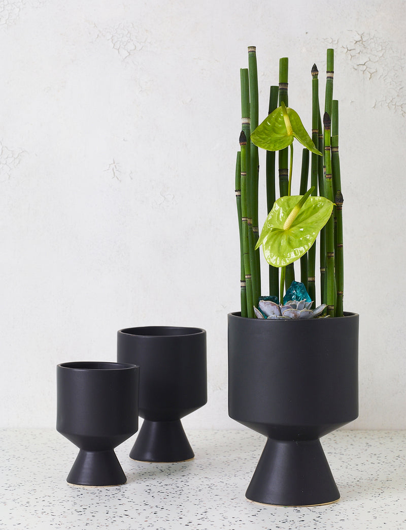 De Vil Pot, Black