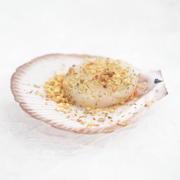 Spiced Australia Scallops in Shell