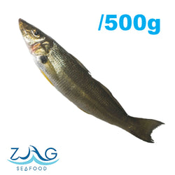 Australian Sand Whiting (Whole)