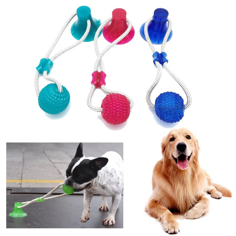 Amazing Multifunction Pet Molar Bite Toy
