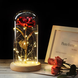 Wooden Glass Dome LED Galaxy Rose