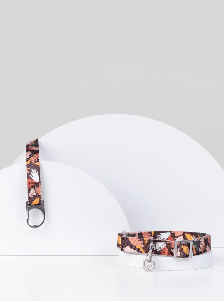 Fur Sie Clemens Dog Leash & Collar Set - Moxie Tel-Aviv