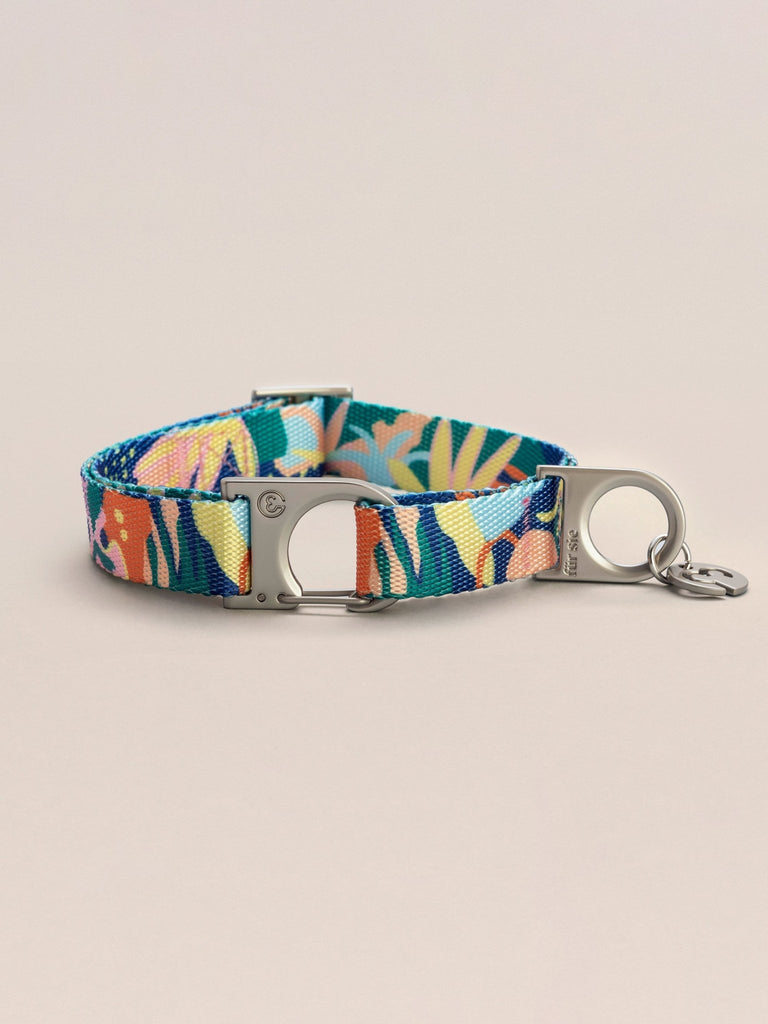 Fur Sie Frans Dog Leash & Collar Set - Moxie Tel-Aviv