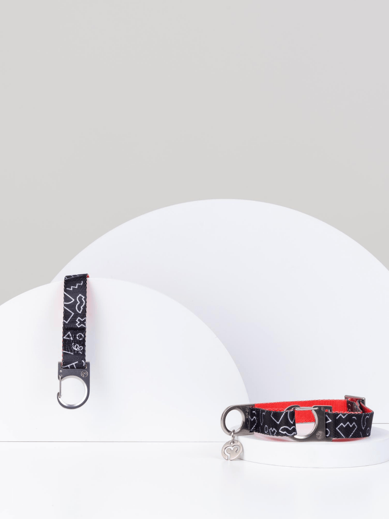 Fur Sie Otis Dog Leash & Collar Set - Moxie Tel-Aviv