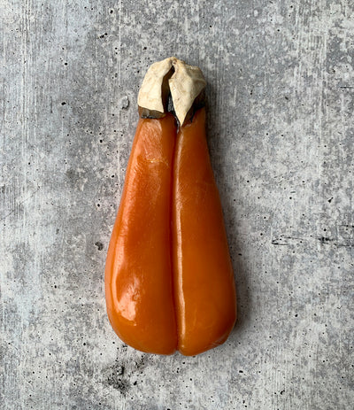 Best Sardinian Bottarga photos by Regalis Foods - item 1