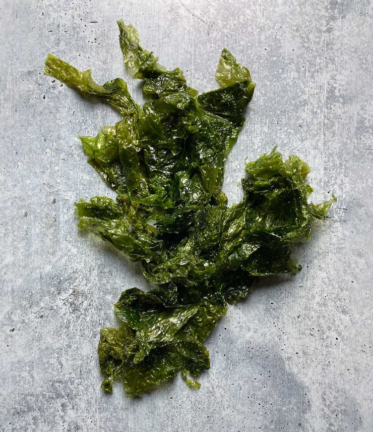Diver Caught Salted Sea Lettuce 1 Kilo