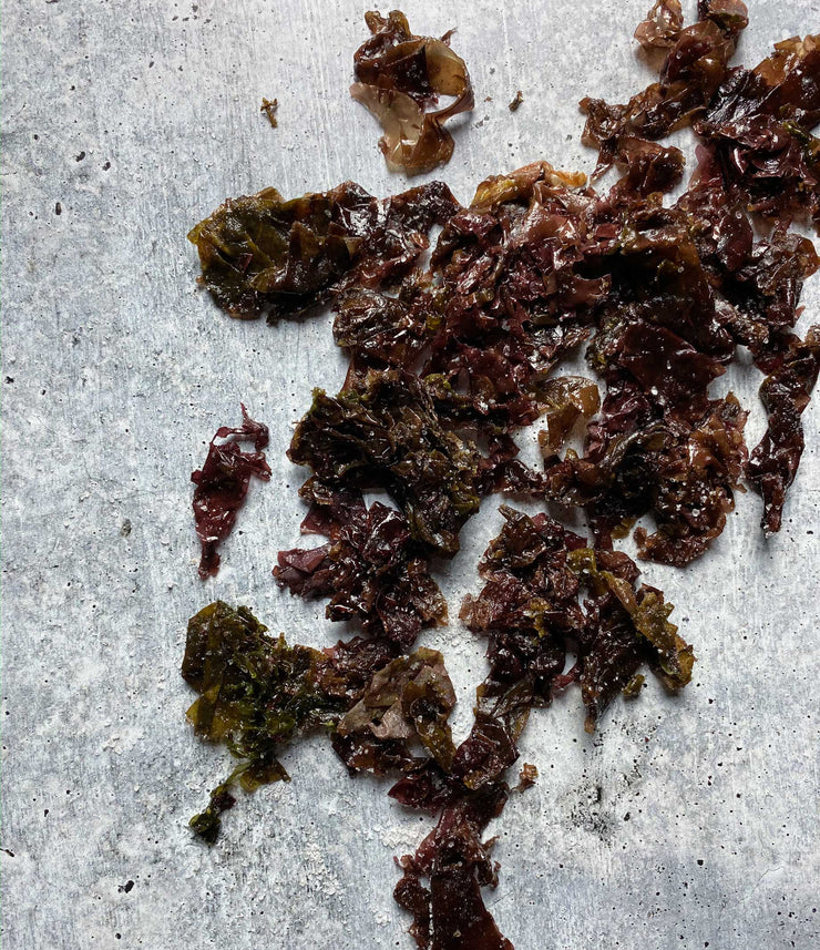 Diver Caught Salted Dulse 1 Kilo