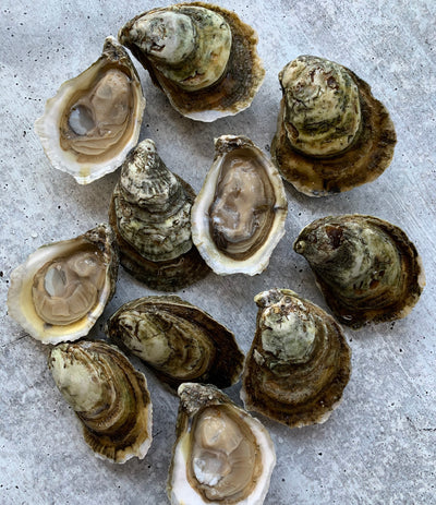 Cape Hatteras Oysters - 50 pc