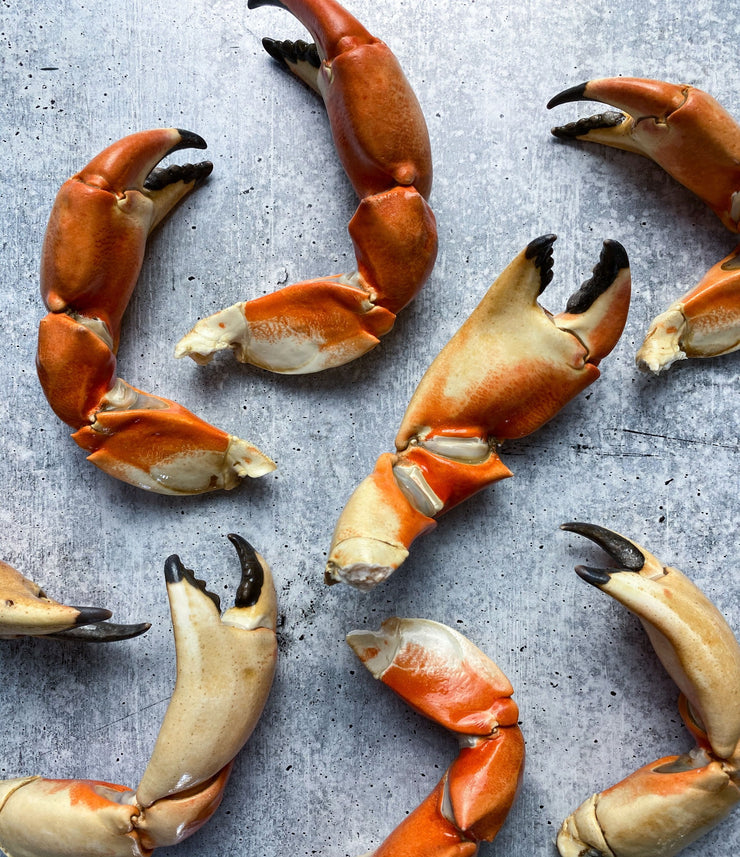 California XL Rock Crab Claws