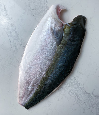 Crown Toro Hamachi Side (Yellowtail Amberjack)