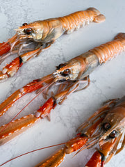XXL Super-Frozen Norwegian Langoustine, 1kg tray