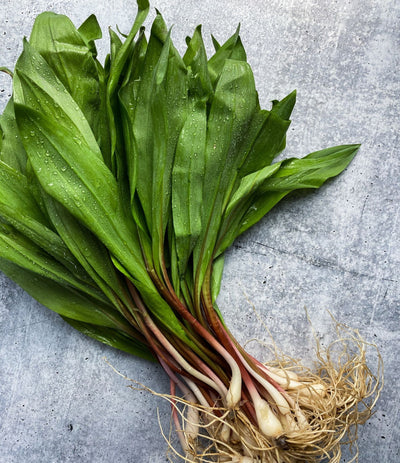Best Fresh Wild Ramps-1 lb. photos by Regalis Foods - item 1