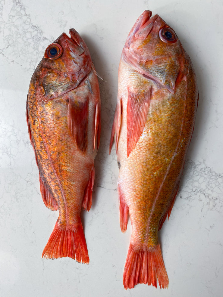 Best Vermillion California Rockfish photos by Regalis Foods - item 2
