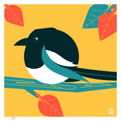 Magpie 4x4 Limited Edition Print