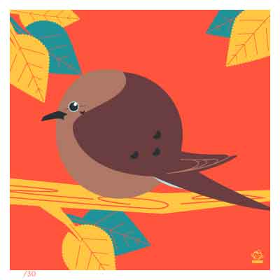 BORBS Mourning Dove 4x4 Limited Edition art print